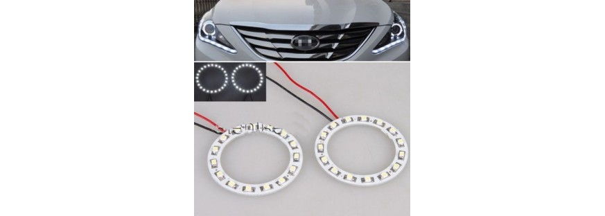 LED Ring Lights